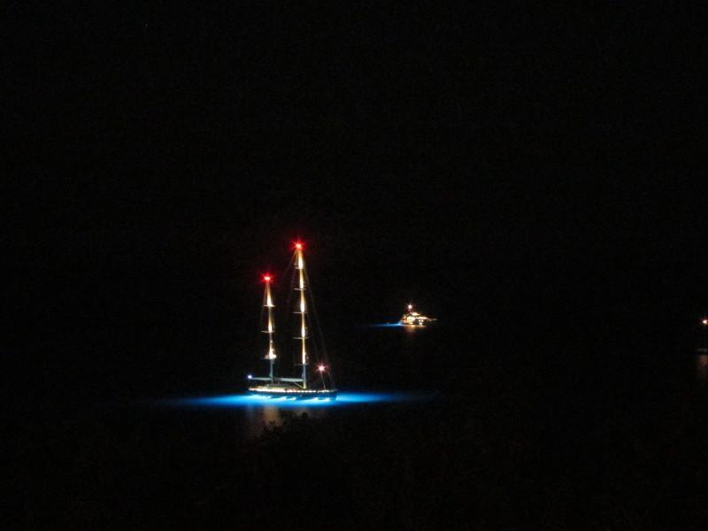 Masts at night in Crocus Harbor - viewed from Oceana