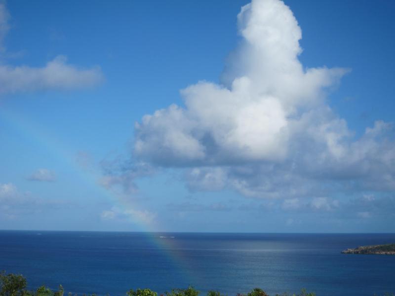 Rainbow over Crocus