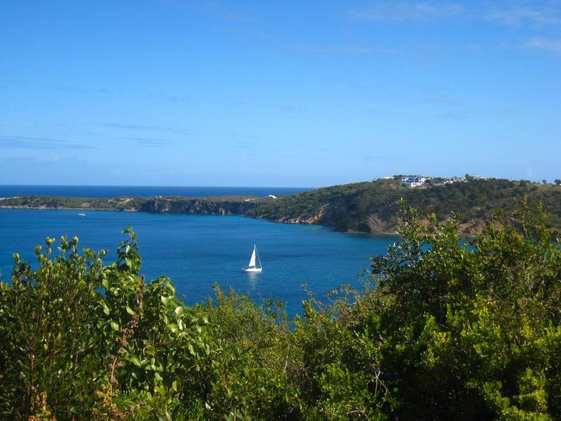 Sailboat coming into Crocus Bay