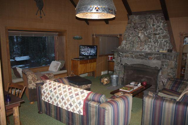 Living room- big handcrafted stone fireplace!