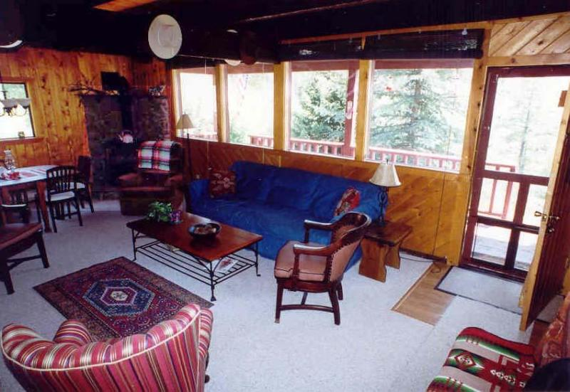 Serendipity Mountain Home & Studio, holiday rental in Pagosa Springs