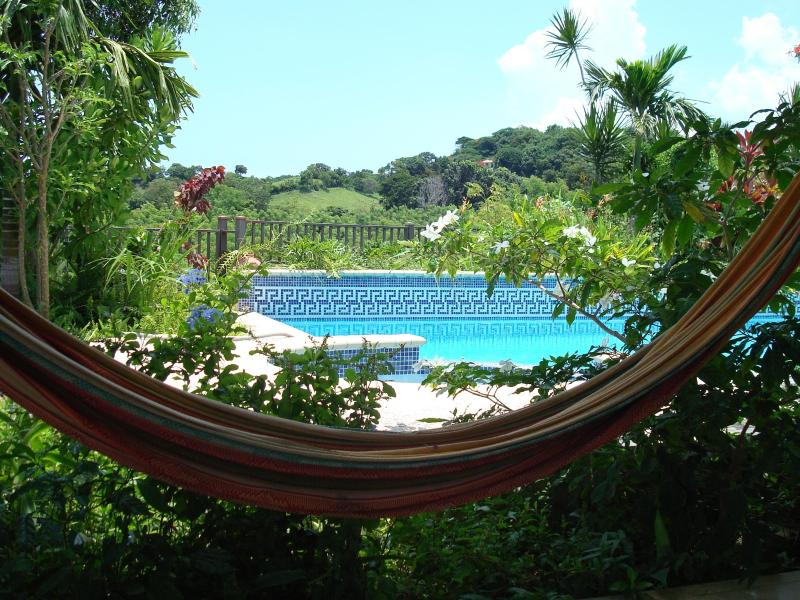 View of pool and mountains from hammock