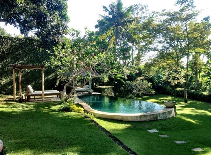 serene tropical gardens with rice field views