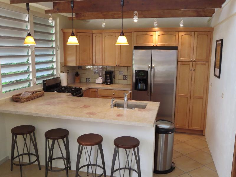 The newly renovated upstairs kitchen