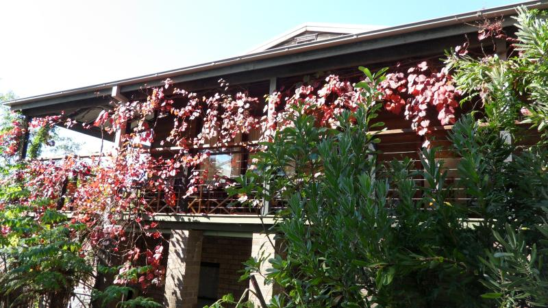 Self contained House in the Blue Mountains., holiday rental in Kurrajong