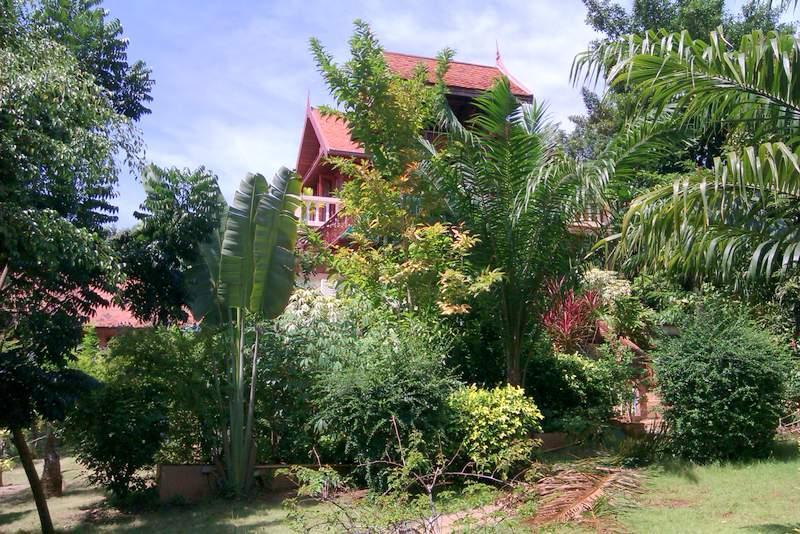 Side view from garden