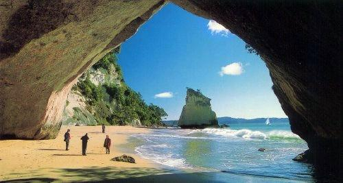 Cathedral cove 15 minutes drive
