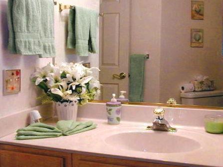 Guest Bathroom (view #3)