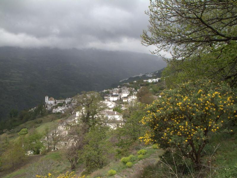 Village in moody weather