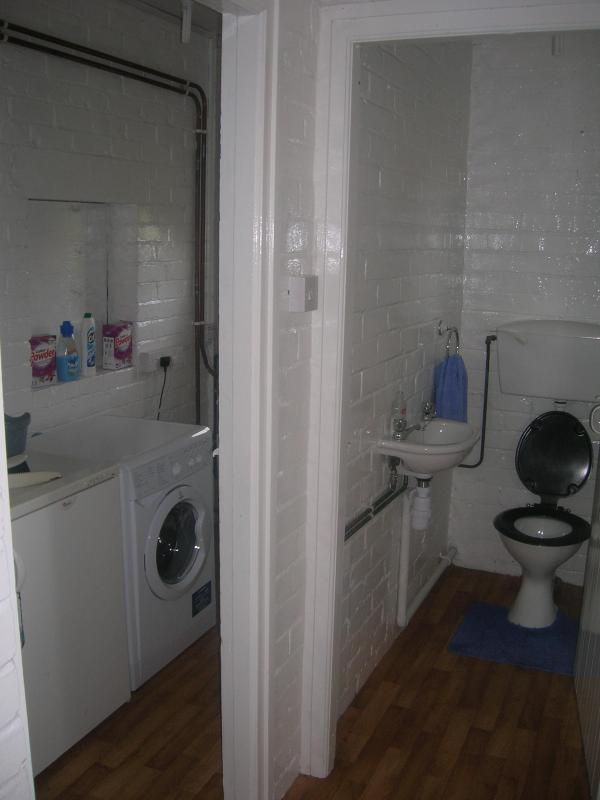 Downstairs Toilet and Utility Room containing Freezer and Washer/Drier along with washing powder.