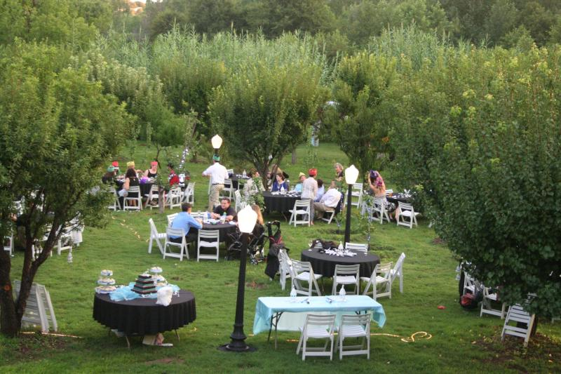 Wedding Reception in the Orchard Sept 3, 2012