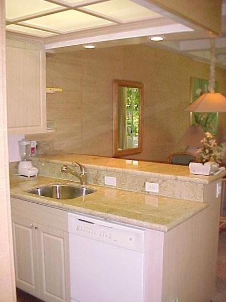 Granite Countertops and new cabinets