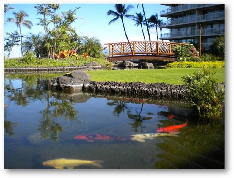 Lush Tropical Grounds at The Whaler on Kaanapali Beach Vacation Condo Renatl