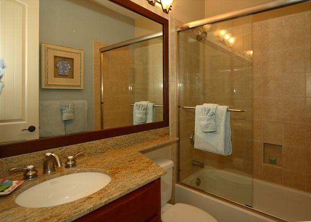 Guest Bedroom Master Bath