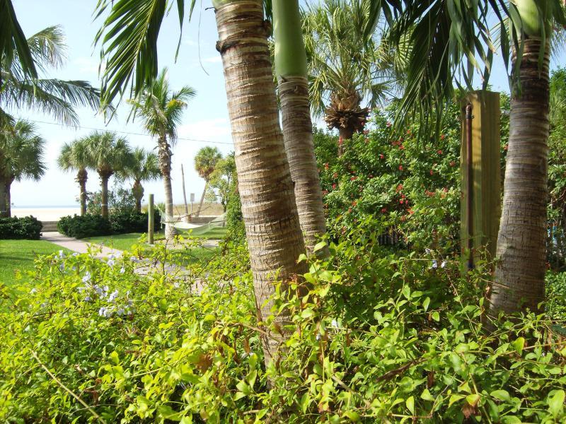 The lush gardens facing the Beach