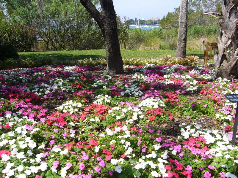 Beautiful gardens and Parks surrounding us.