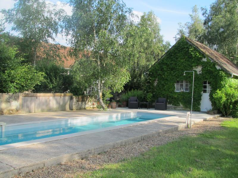 Charming & Private Stone Cottage W/ Saltwater Pool, vacation rental in Loir-et-Cher