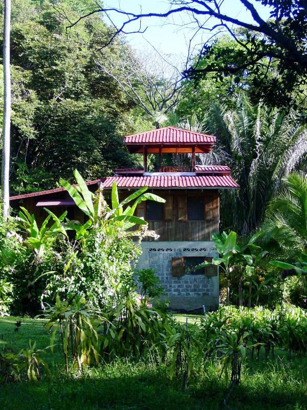 La proprietà è circondata su tre lati da sottosviluppato foresta-grande privacy & osservazione della fauna selvatica.