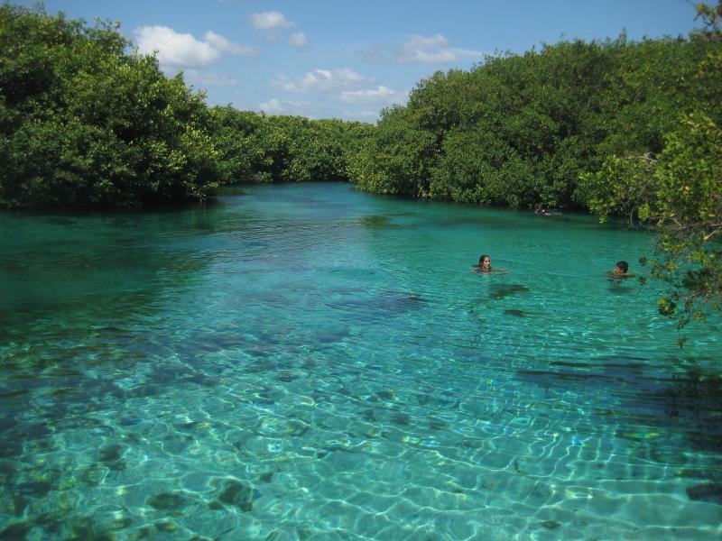 Cenote Manati just a 15 minute walk