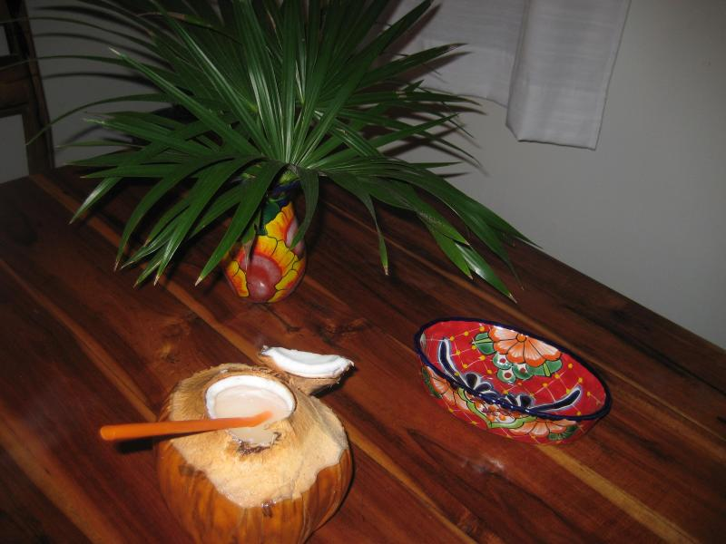 fresh coconut from our trees