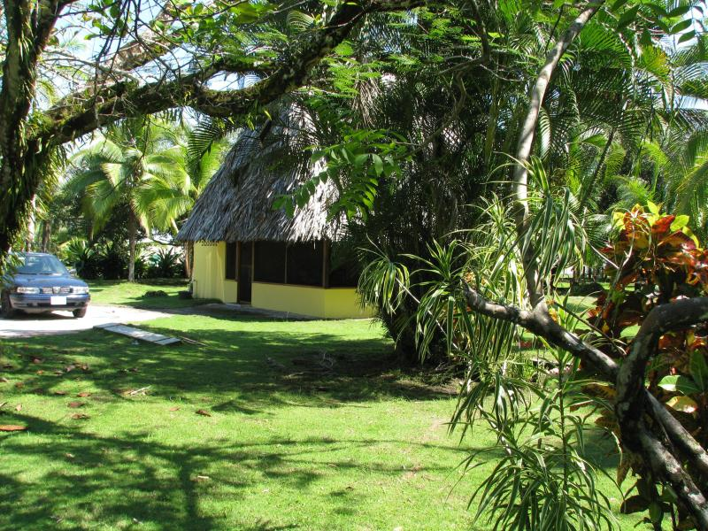 house, tropical privacy