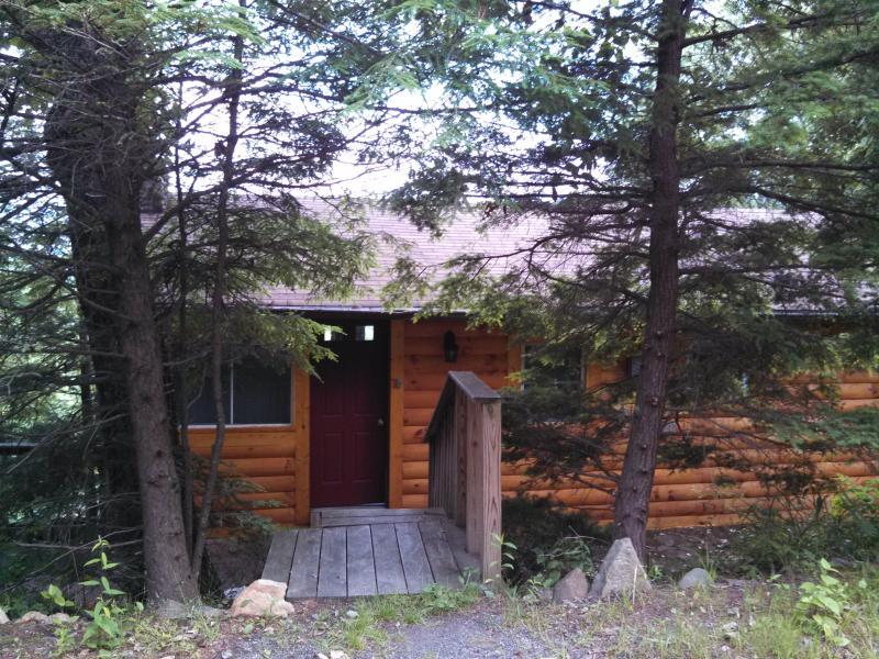 Cabin in the Clouds, alquiler vacacional en Black Mountain