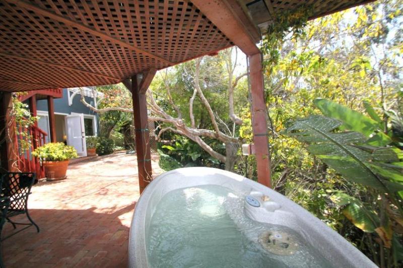 Profiter du spa dans le cadre de la jungle.