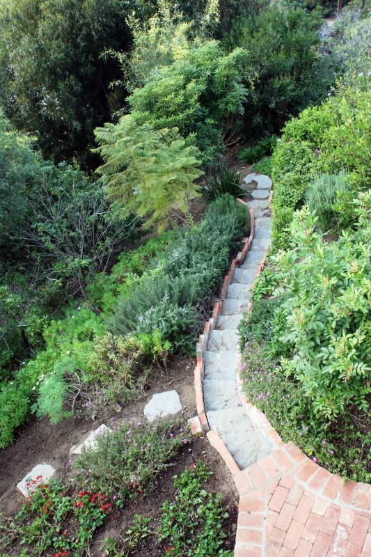 Étapes à suivre un sentier de jardin.