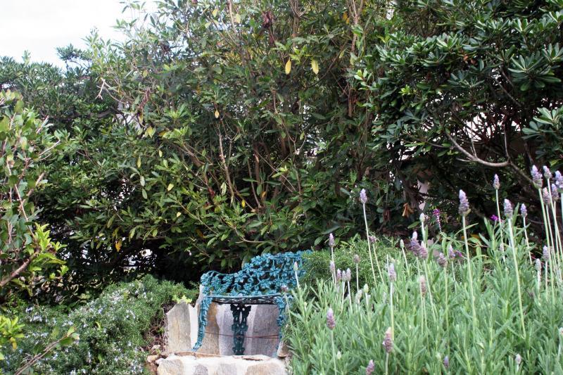 Zithoek in de rustige tuin.