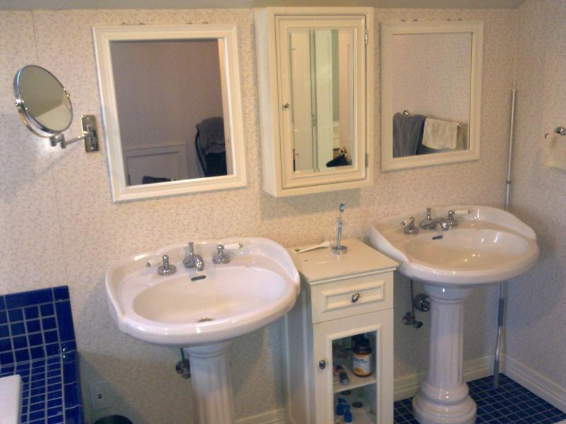 Sinks with cabinets