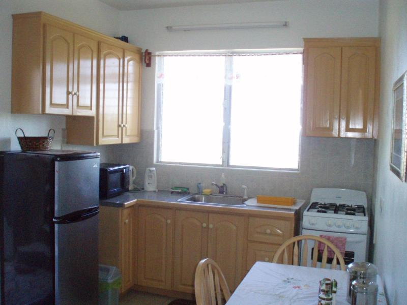 MacZel Apartment, holiday rental in Montserrat