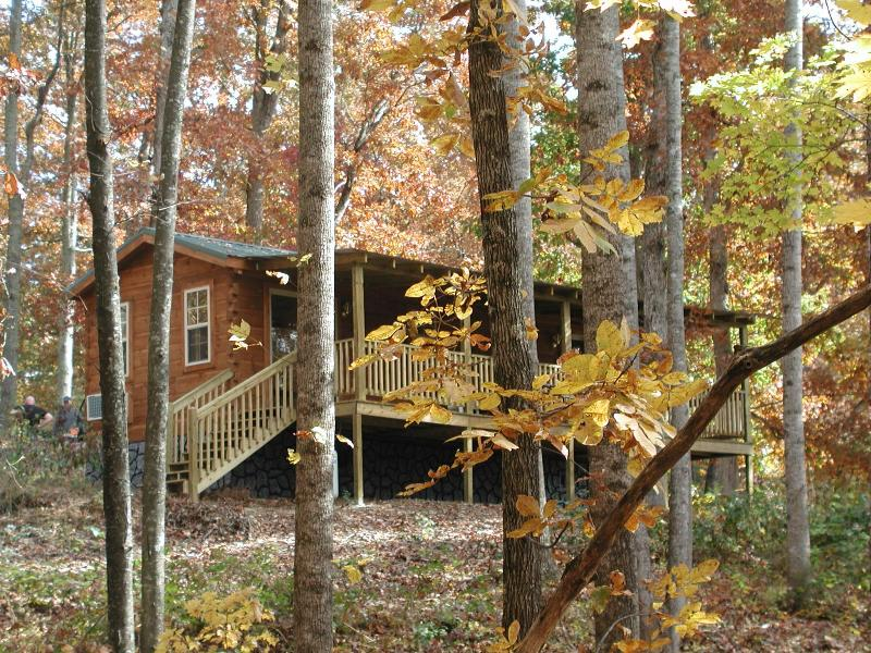 Mountain Cabin in Apple Country Hendersonville, NC, Ferienwohnung in Hendersonville