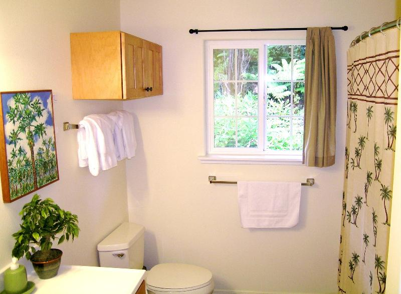 Roomy Bathroom, curved out shower curtain, Hairdryer, soaps, shampoo... Iron/Board available too