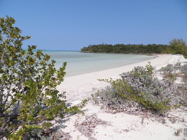Quiet, shallow peaceful beach for nudists.