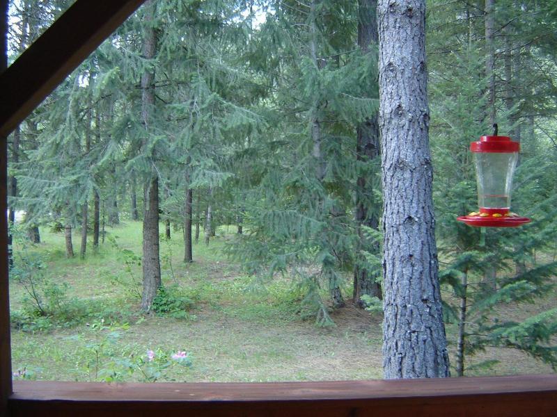 La vue depuis le porche