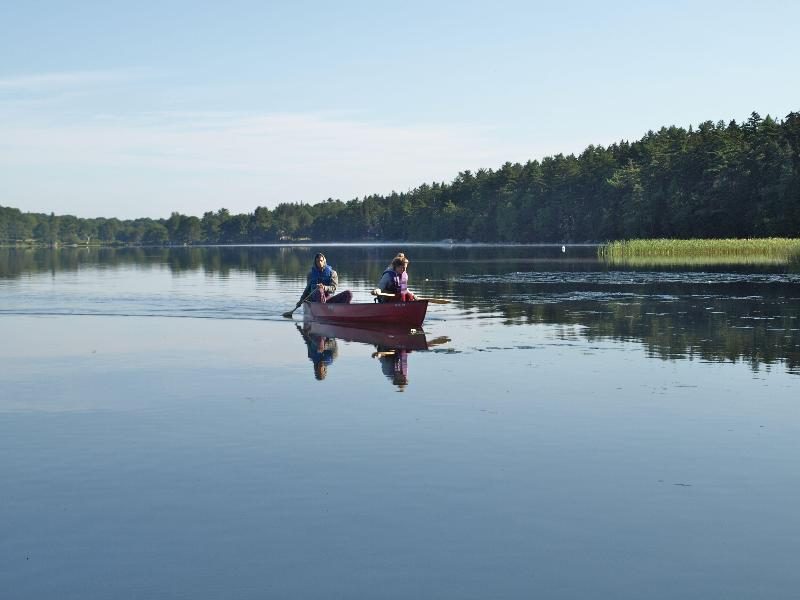 A morning paddle on the pond