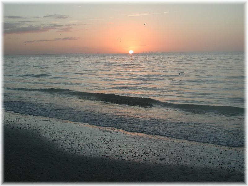 Sunrise at Sanibel Arms