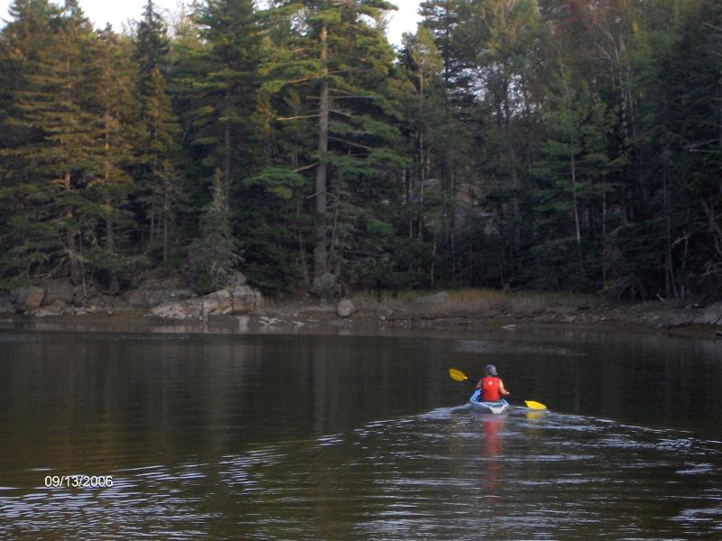 Paddle from the propoerty.