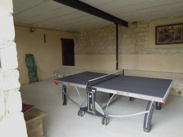 game room / table tennis