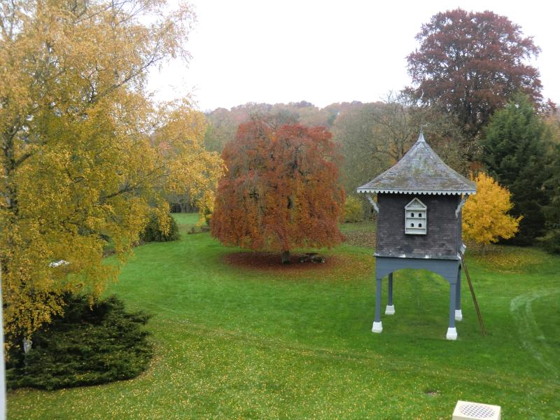 Autumn leaves / rare beech tree and as rare ancient pigeonnier (pigeon loft) with  400 pigeon holes