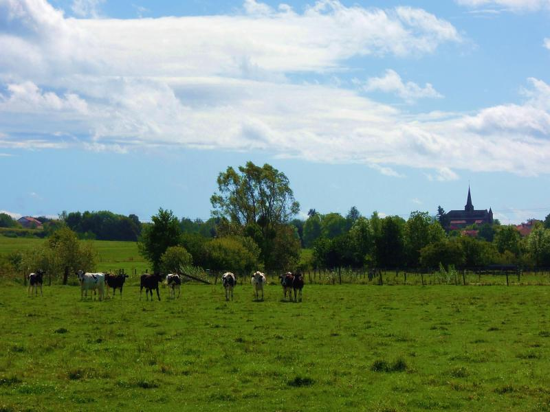 The valley of the river Aisne: view on the village church of Villers