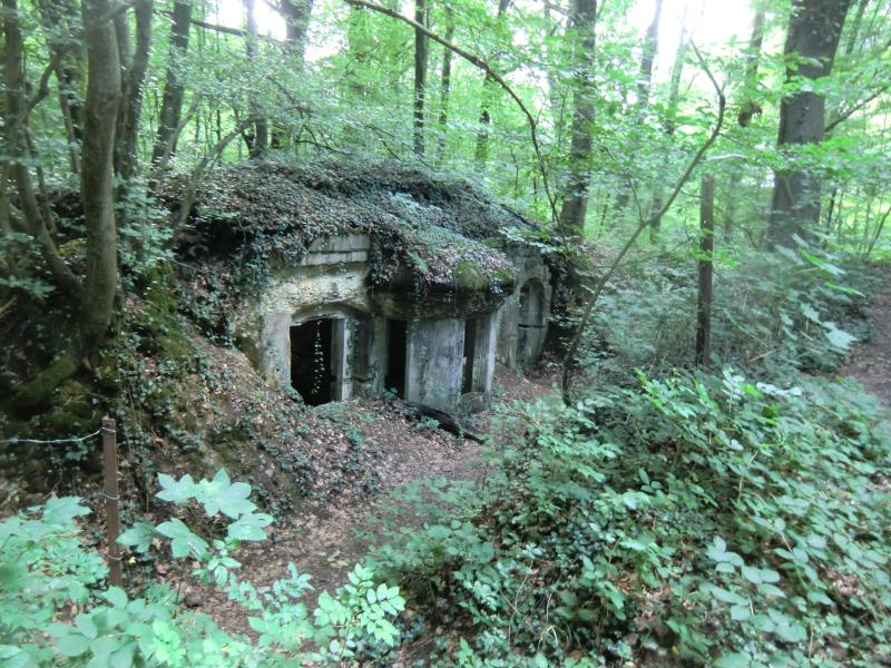 Kaiser tunnel / entrance/exit WWI German underground field hospital to visit