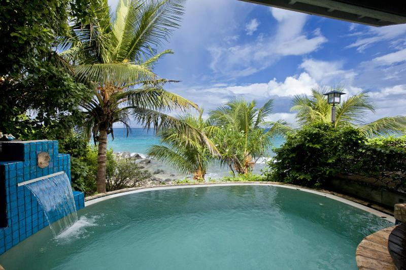 Romantic, alluring, enticing (insert adjective) infinity edge plunge pool with beach view;Sundowner.