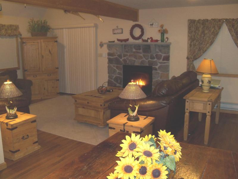 Living Room w/Gas Fireplace & TV/ VCR/ DVD
