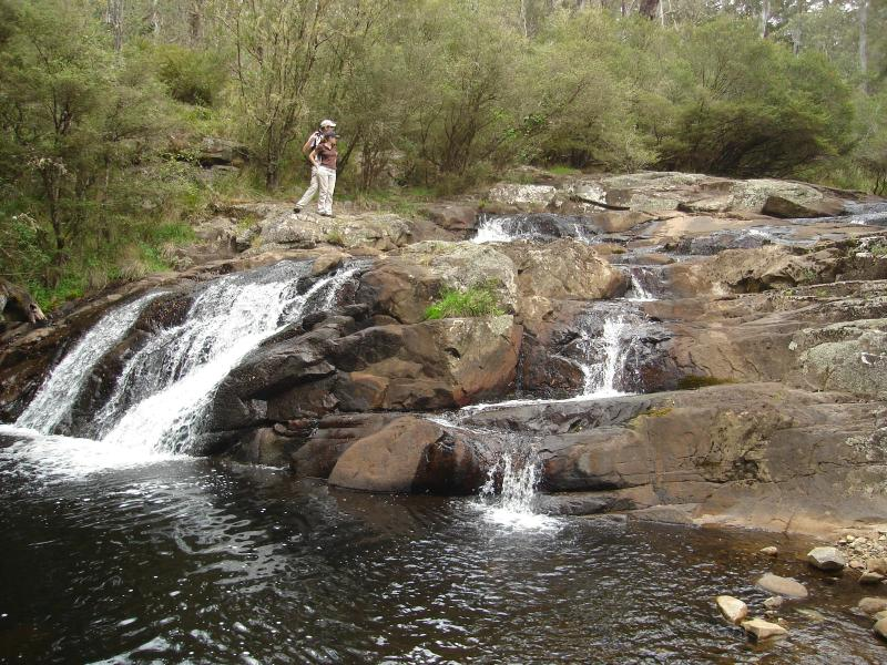 Barrington Tops 4WD Tours - breathtaking scenery