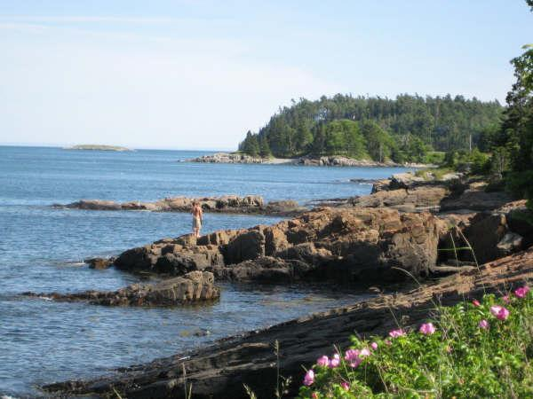 Search the tidepools in front of your dedicated Bar Harbor Shorepath seating at 'Devilstone!'