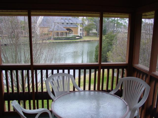 screened in porch overlooking our lake