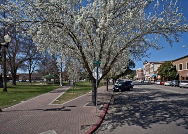 Paso Robles City Park Square steps from Park Place Vacation Rent