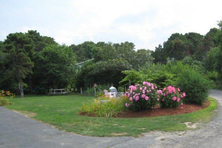 Lovely landscaped yard