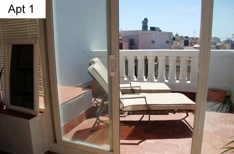 Apt 1 - terrace